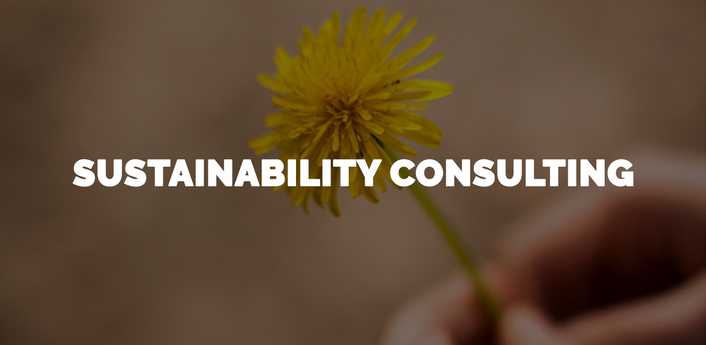 Sustainability & Corporate Responsibility Consulting Delhi, Noida, Gurgaon